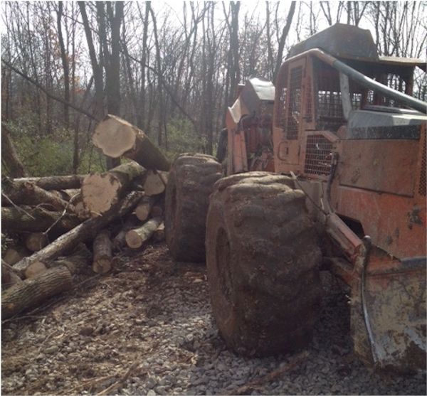 Used 1988 Timberjack 240A for Sale